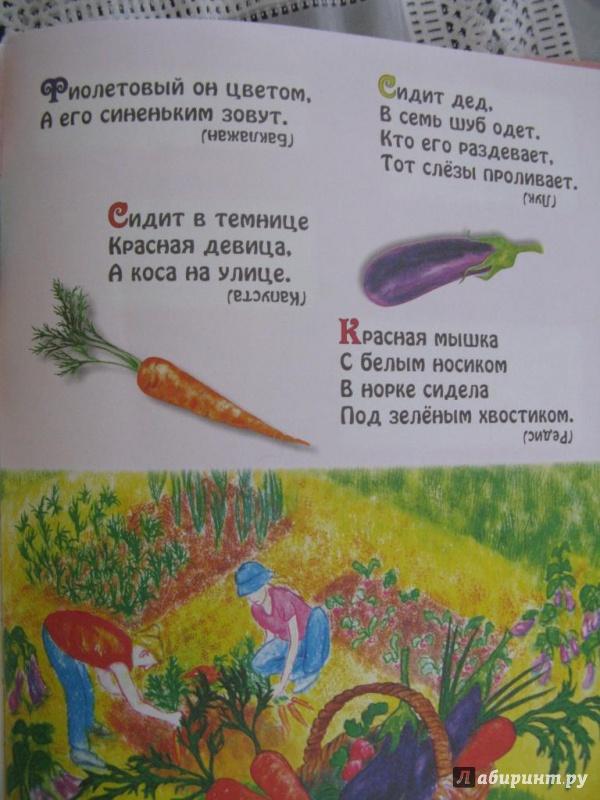 Иллюстрация 7 из 13 для Большая книга загадок | Лабиринт - книги. Источник: Уткина  Любовь