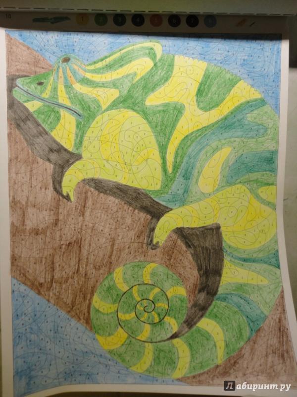 Иллюстрация 17 из 24 для Раскраска-антистресс. Животные ...