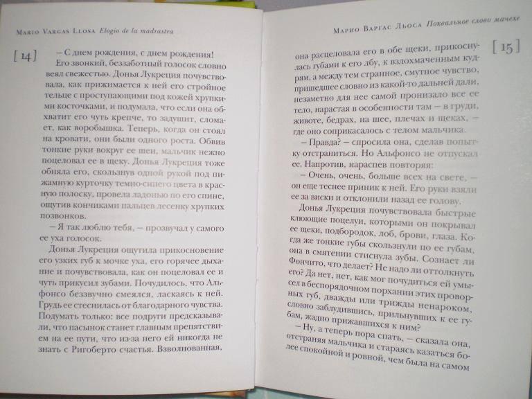 Иллюстрация 1 из 5 для Похвальное слово мачехе - Льоса Варгас   Лабиринт - книги. Источник: Ирина