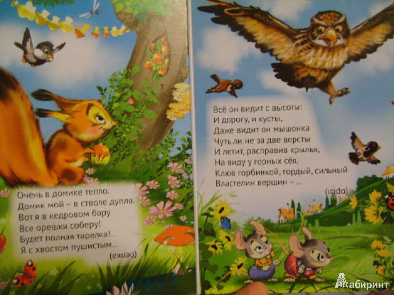 Иллюстрация 10 из 12 для Это кто? - Анатолий Чекулаев | Лабиринт - книги. Источник: anchutka