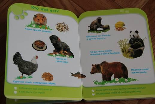 Иллюстрация 2 из 8 для Жизнь животных (от 3-х лет) | Лабиринт - книги. Источник: Vilvarin  Laurea