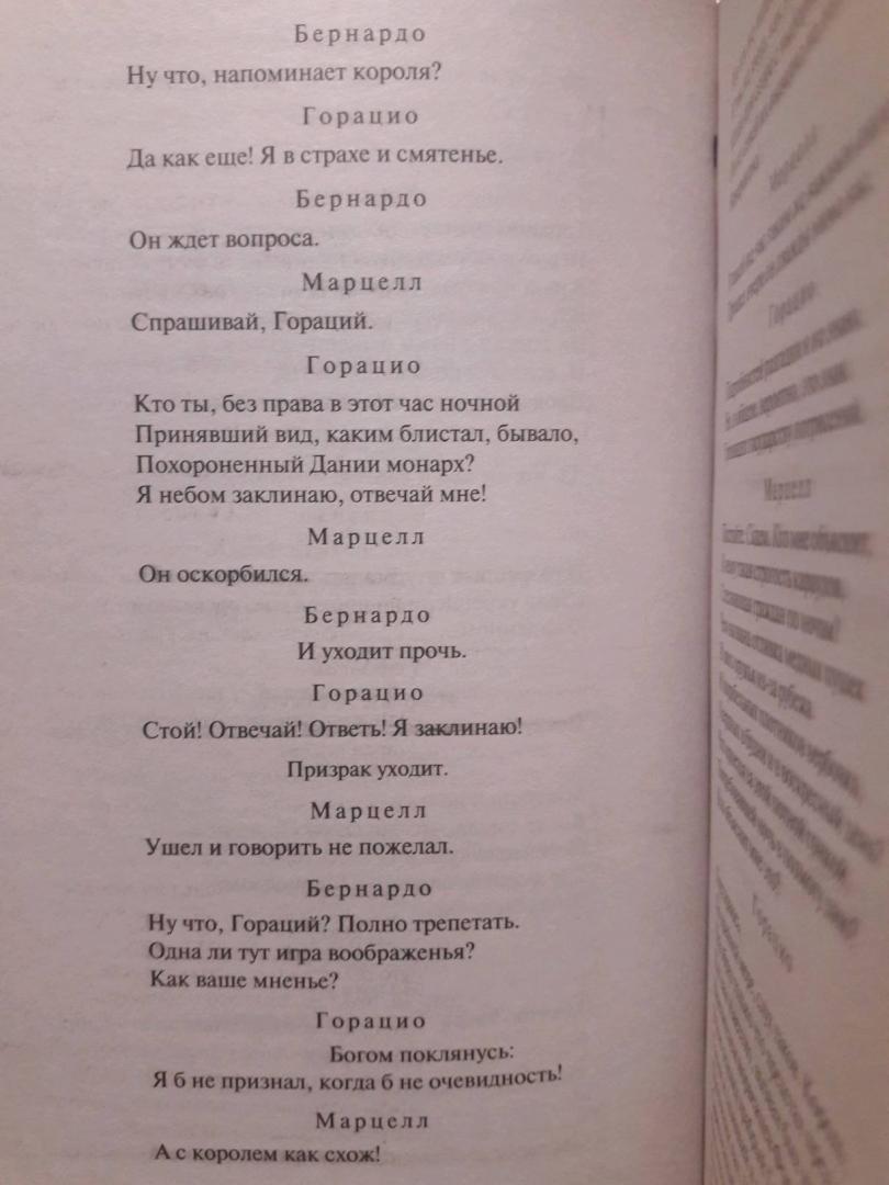 Иллюстрация 18 из 23 для Гамлет. Король Лир - Уильям Шекспир   Лабиринт - книги. Источник: Анастасия Купцова