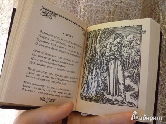 Иллюстрация 3 из 5 для Сонеты - Франческо Петрарка | Лабиринт - книги. Источник: Голоухова  Валерия