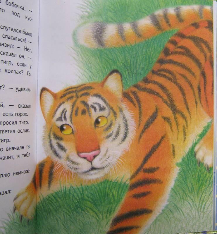 Иллюстрация 15 из 18 для Читаем сами. Разговоры животных - Е. Позина | Лабиринт - книги. Источник: Спанч Боб