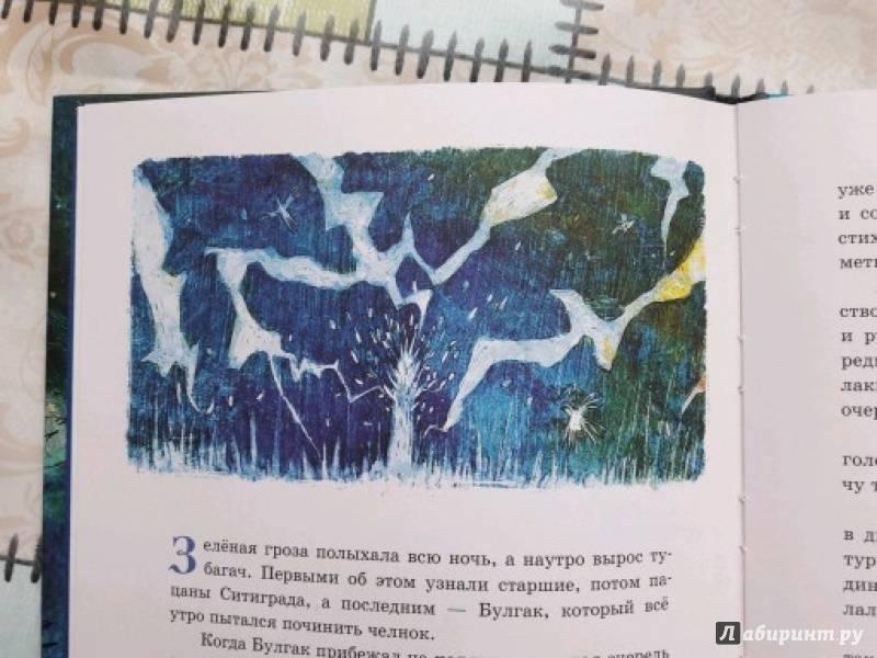 Иллюстрация 14 из 26 для Тубагач - Шамиль Идиатуллин | Лабиринт - книги. Источник: Бардина Ирина