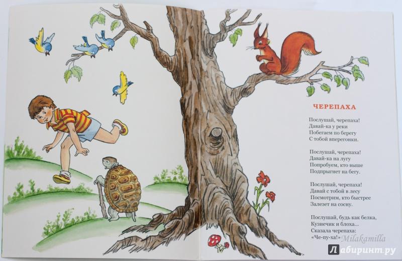 Иллюстрация 29 из 36 для Послушай, черепаха! - Михаил Кудинов | Лабиринт - книги. Источник: Букландия