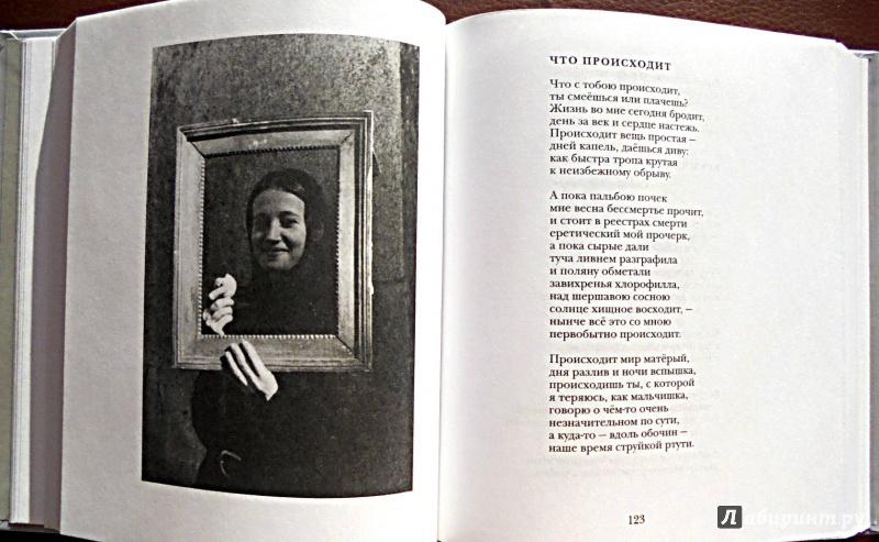 Иллюстрация 7 из 22 для Между Я и Явью: Избранные стихи - Павел Грушко | Лабиринт - книги. Источник: Александр Н.