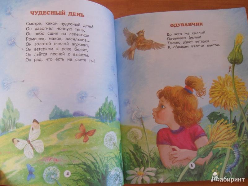 Иллюстрация 3 из 14 для Чудеса вокруг - Владимир Степанов | Лабиринт - книги. Источник: knigolyub