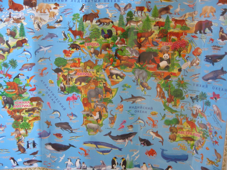 только карта мира с картинками животных оттоманкой марибо