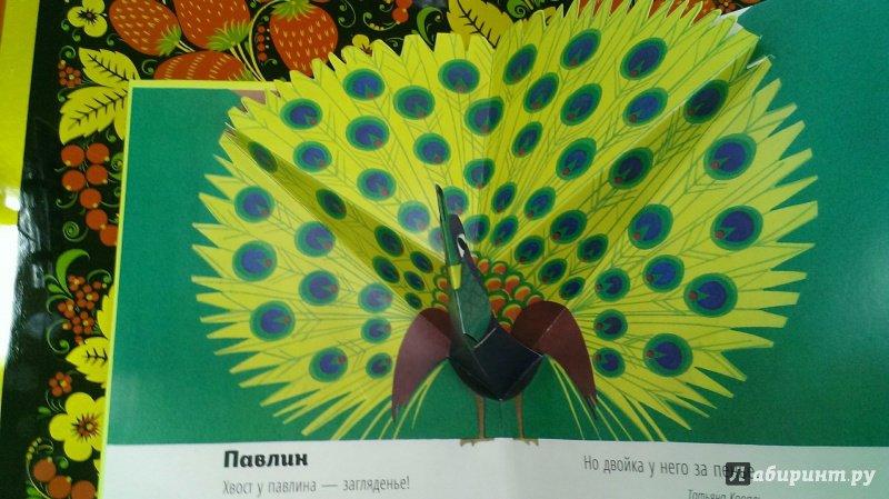 Иллюстрация 10 из 14 для Картонный ZOO квартет. Ух, какая... Такса | Лабиринт - книги. Источник: Савчук Ирина