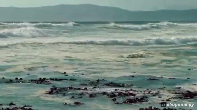 Иллюстрация 1 из 10 для Дикая Южная Африка: по следам белых акул 3D (Blu-Ray) - Норберт Вандер | Лабиринт - видео. Источник: noname
