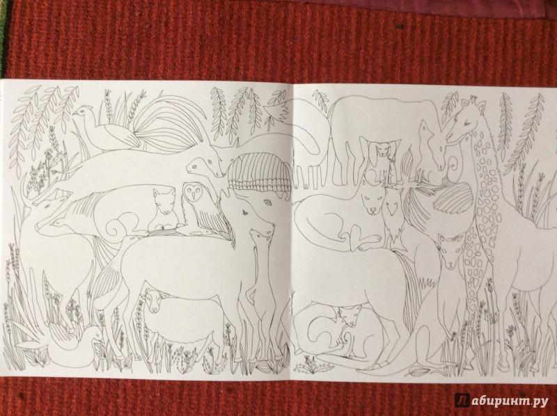 Иллюстрация 12 из 27 для Раскраска. Прятки-загадки ...