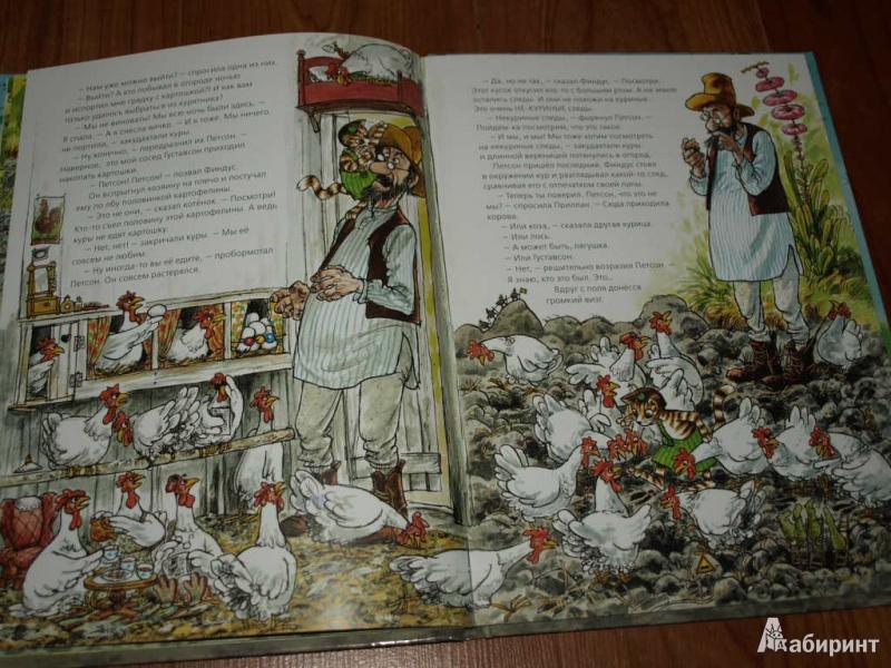 Иллюстрация 18 из 57 для Переполох в огороде - Свен Нурдквист | Лабиринт - книги. Источник: Гусева  Анна Сергеевна