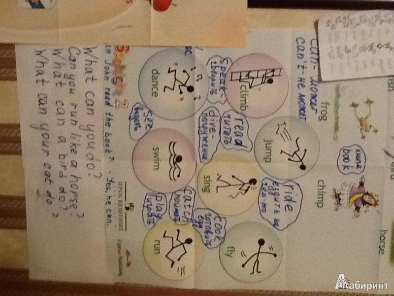 Иллюстрация 1 из 6 для Английский в фокусе. 2 класс. Плакаты настенные складные - Эванс, Дули | Лабиринт - книги. Источник: tatatigr