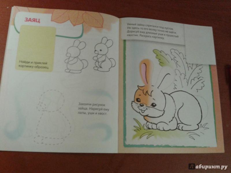 Иллюстрация 10 из 25 для Лесные звери. Дорисуй и раскрась | Лабиринт - книги. Источник: v