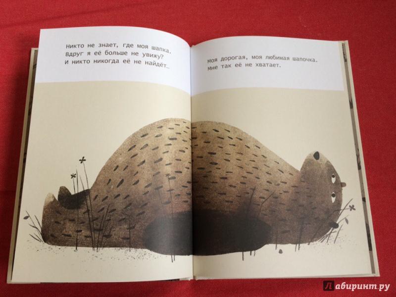 Иллюстрация 17 из 23 для Где моя шапка? - Джон Классен | Лабиринт - книги. Источник: Сан Санна