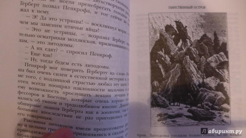 Иллюстрация 31 из 78 для Таинственный остров - Жюль Верн | Лабиринт - книги. Источник: Кондрашева  Анна