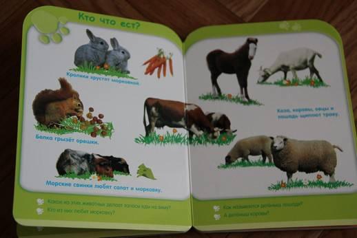 Иллюстрация 3 из 8 для Жизнь животных (от 3-х лет)   Лабиринт - книги. Источник: Vilvarin  Laurea