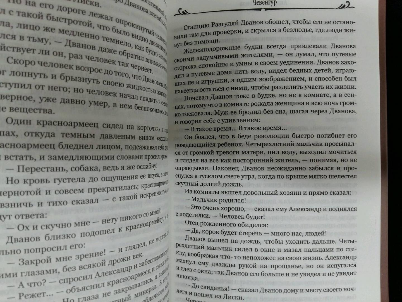 Иллюстрация 10 из 34 для Чевенгур - Андрей Платонов | Лабиринт - книги. Источник: L  Elena