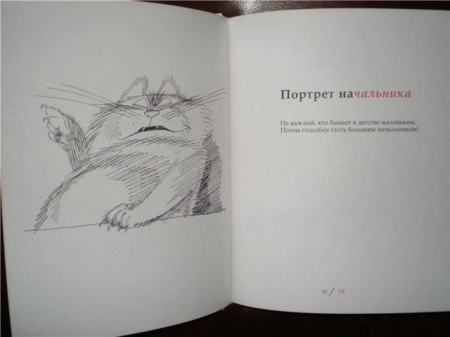 Иллюстрация 22 из 68 для Котография на память: жизнеописание котов, их нравы, обычаи, мифы - Чижиков, Усачев   Лабиринт - книги. Источник: Гостья