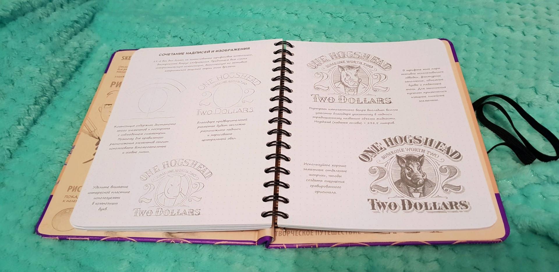 Иллюстрация 27 из 30 для Sketchbook. Рисуем красивые шрифты. Искусство леттеринга. Визуальный экспресс-курс рисования - Пименова, Осипов | Лабиринт - книги. Источник: Nosta-Lind
