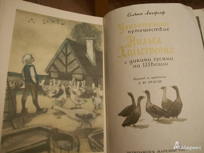 Иллюстрация 3 из 28 для Удивительное путешествие Нильса Хольгерссона с дикими гусями по Швеции - Сельма Лагерлеф | Лабиринт - книги. Источник: Львова  Ирина