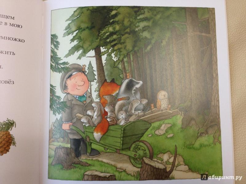 Иллюстрация 26 из 72 для После бури - Ник Баттерворт | Лабиринт - книги. Источник: antonnnn