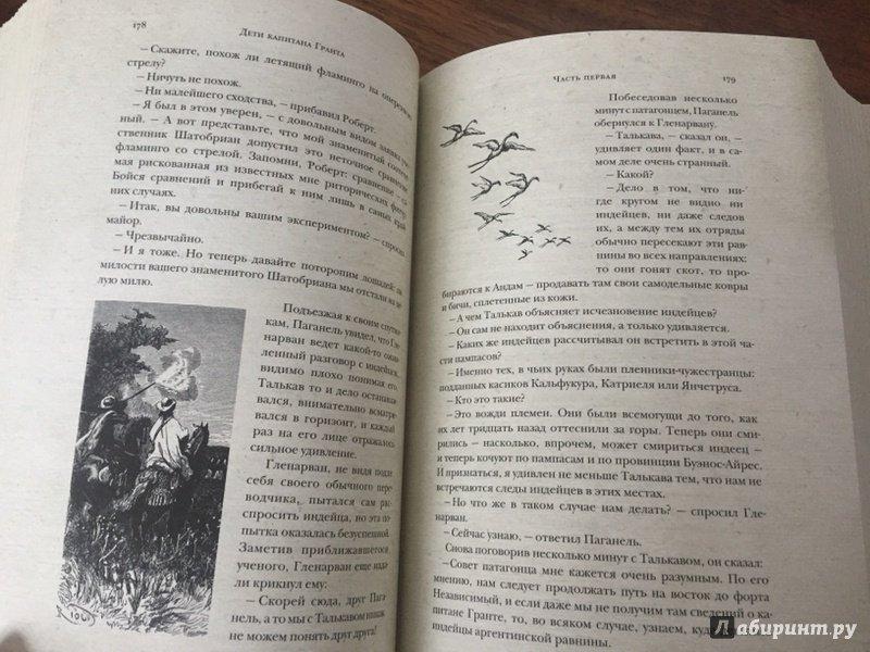 Иллюстрация 24 из 29 для Дети капитана Гранта - Жюль Верн | Лабиринт - книги. Источник: Шутько  Татьяна Викторовна
