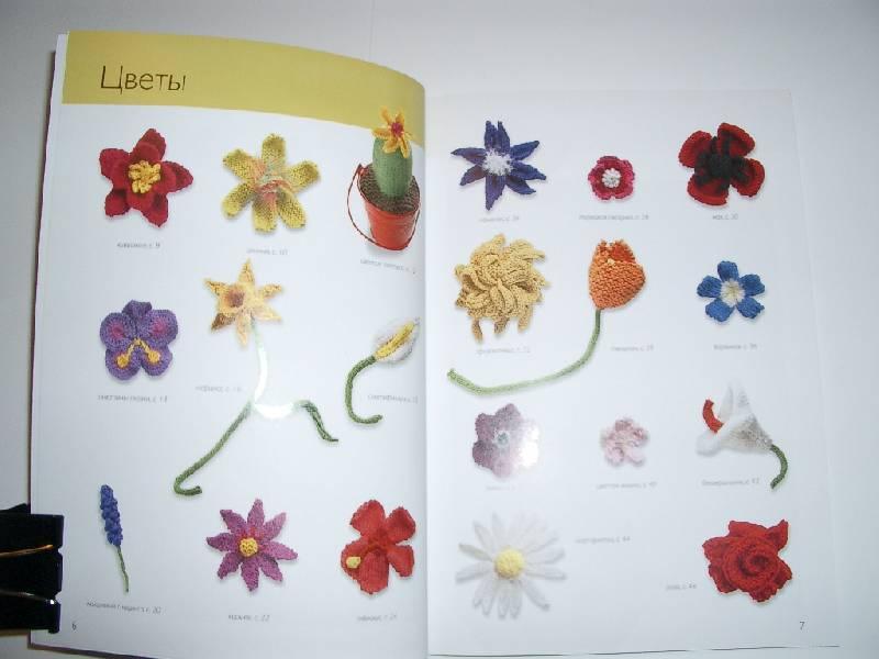 Иллюстрация 4 из 39 для Вязаные цветы: 20 проектов - Сьюзи Джонс | Лабиринт - книги. Источник: Afalina