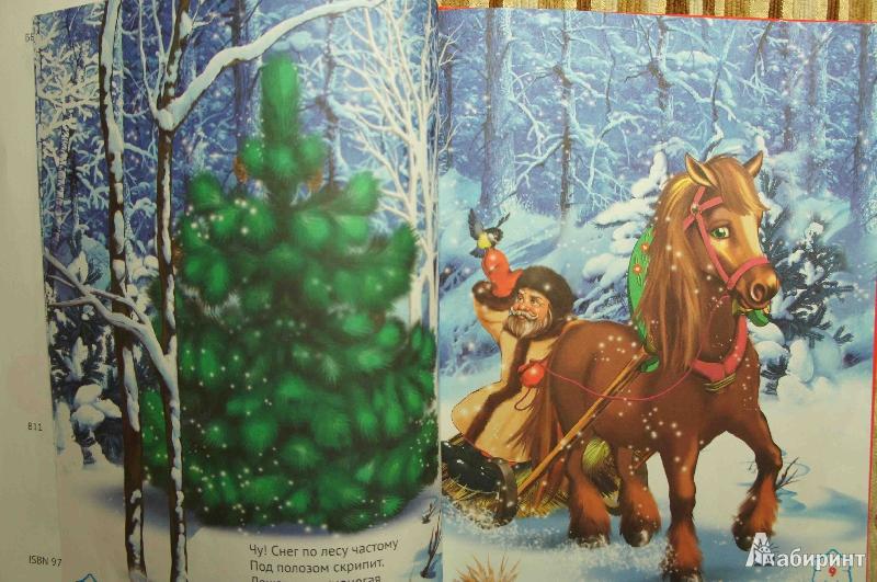 Картинки для детей в лесу родилась елочка