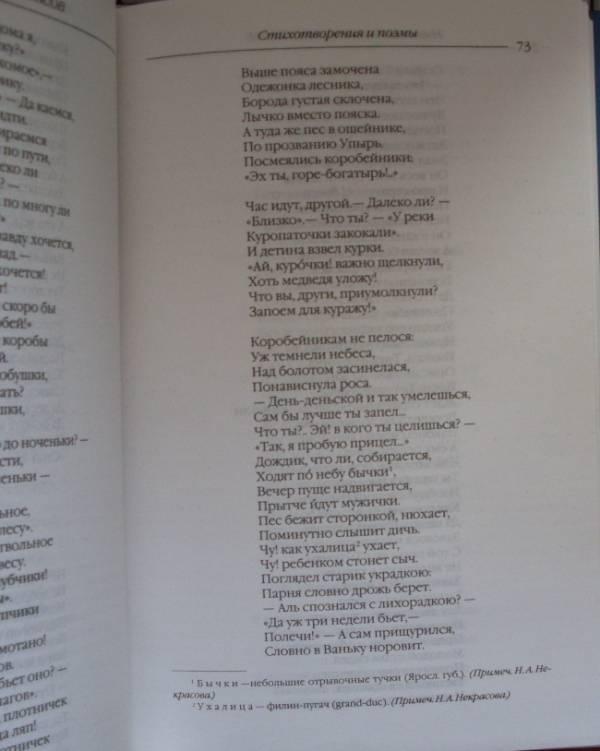 Иллюстрация 16 из 22 для Стихотворения и поэмы. Кому на Руси жить хорошо - Николай Некрасов   Лабиринт - книги. Источник: Клестова  Александра Владимировна