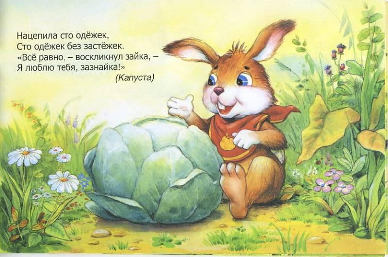 данном стихи с зайчиками и картинки к стихам всадника это