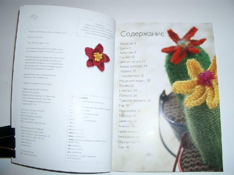 Иллюстрация 3 из 39 для Вязаные цветы: 20 проектов - Сьюзи Джонс | Лабиринт - книги. Источник: Afalina