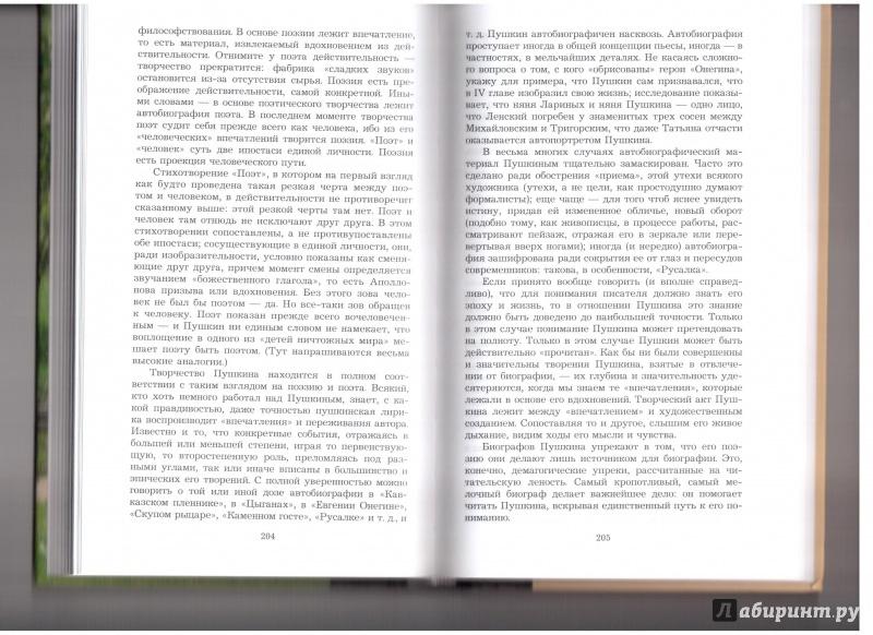 Иллюстрация 18 из 20 для О Пушкине - Владислав Ходасевич | Лабиринт - книги. Источник: Скоков  Сергей