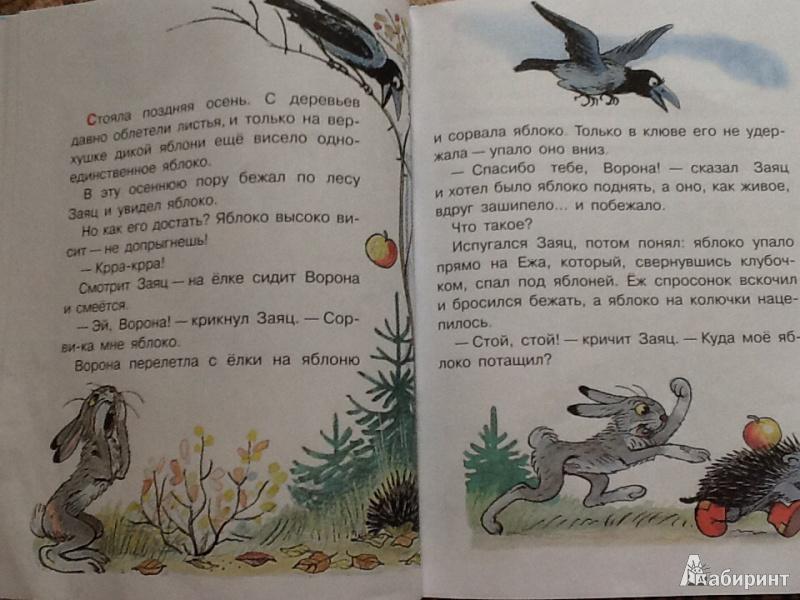 Иллюстрация 6 из 10 для Сказки-мультфильмы - Владимир Сутеев | Лабиринт - книги. Источник: Крылова  Елена