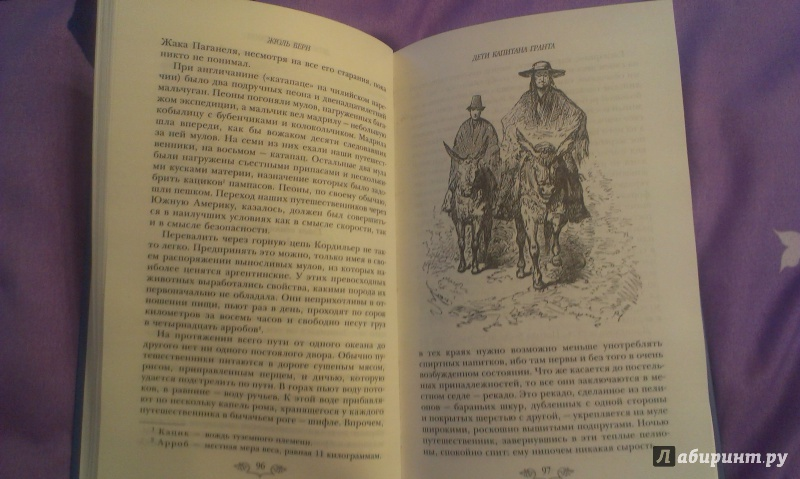 Иллюстрация 4 из 11 для Дети капитана Гранта - Жюль Верн | Лабиринт - книги. Источник: amtare