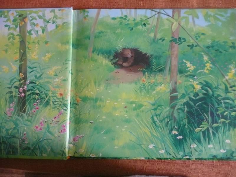 Иллюстрация 7 из 33 для Новый друг Медведика - Уилсон, Чапмен   Лабиринт - книги. Источник: КалинаМалина
