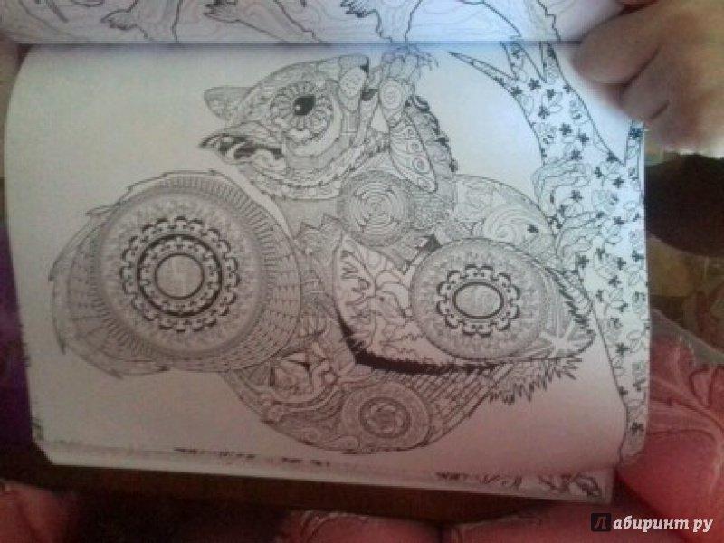 Иллюстрация 52 из 64 для Фантастические создания ...