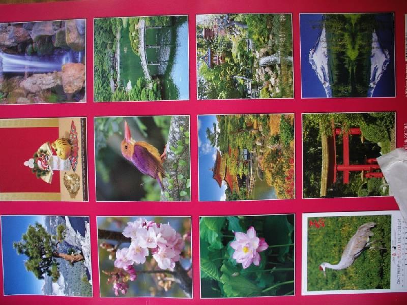 Иллюстрация 1 из 2 для Календарь 2010 Календарь Фэн-Шуй (12909) | Лабиринт - сувениры. Источник: Tiger.