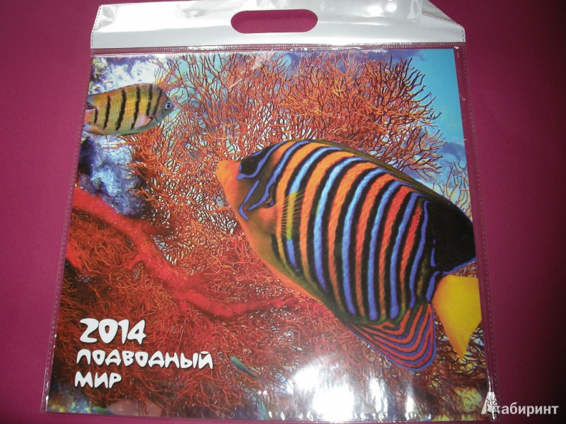 """Иллюстрация 2 из 11 для Календарь 2014 """"Подводный мир""""   Лабиринт - сувениры. Источник: Tiger."""