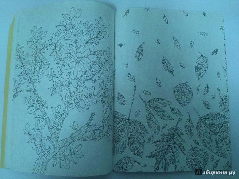 Иллюстрация 4 из 30 для Волшебный сад. Раскраска для ...