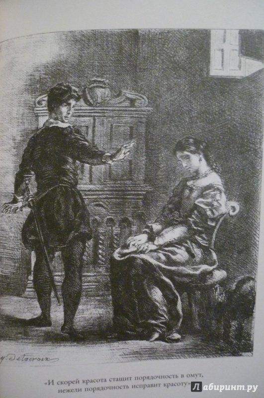Иллюстрация 17 из 36 для Гамлет, принц датский - Уильям Шекспир | Лабиринт - книги. Источник: Алексеенко  Надежда
