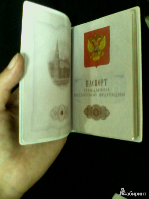 Иллюстрация 6 из 6 для Обложка для паспорта (32397) | Лабиринт - канцтовы. Источник: Anika  Ryzhova