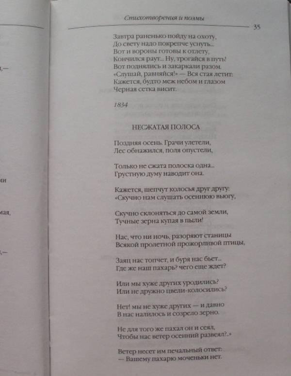 Иллюстрация 9 из 22 для Стихотворения и поэмы. Кому на Руси жить хорошо - Николай Некрасов | Лабиринт - книги. Источник: Сабирзанова  Арина