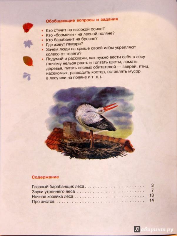 Иллюстрация 18 из 25 для Кто барабанит в лесу? Книга для чтения детям - Александр Тамбиев | Лабиринт - книги. Источник: E.B.