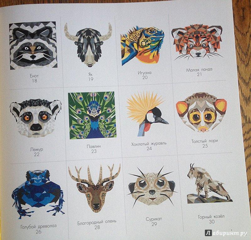 Иллюстрация 12 из 17 для Дикая раскраска | Лабиринт - книги. Источник: З  Вл