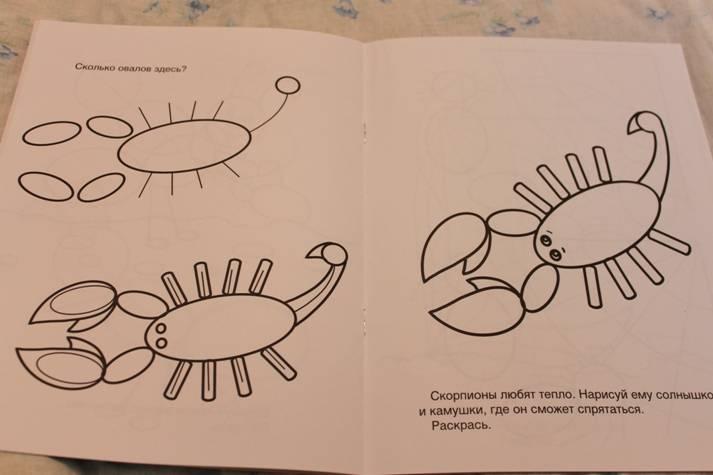 Иллюстрация 5 из 8 для Учусь рисовать. Насекомые | Лабиринт - книги. Источник: Павлинова  Ирина Евгеньевна