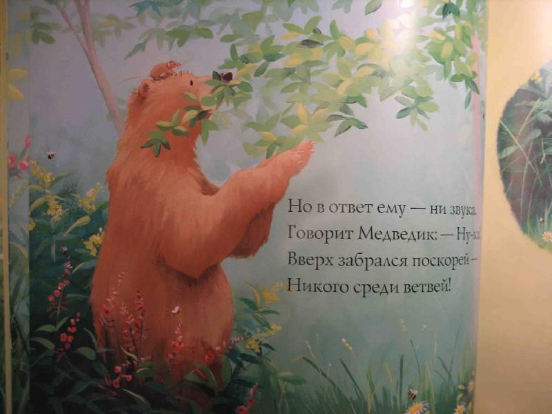 Иллюстрация 25 из 33 для Новый друг Медведика - Уилсон, Чапмен | Лабиринт - книги. Источник: Трухина Ирина