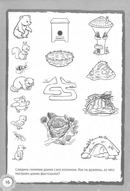 раскраска кто где живет дикие животные небольшого санузла
