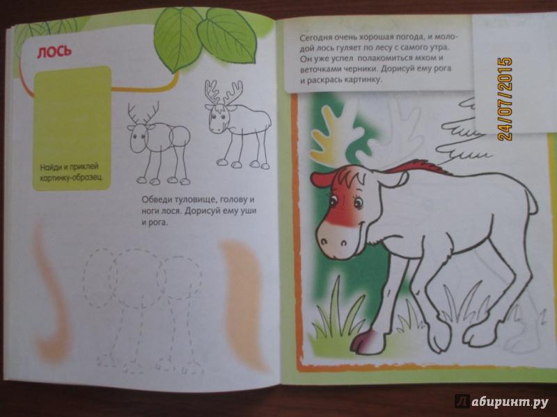 Иллюстрация 4 из 25 для Лесные звери. Дорисуй и раскрась | Лабиринт - книги. Источник: Марина Епифанцева
